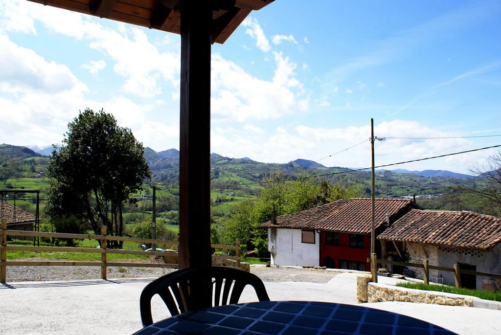 Huerta 26